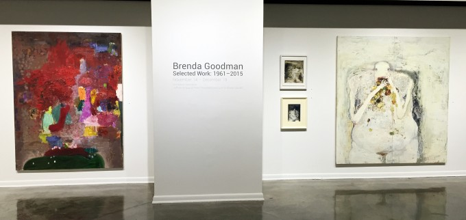 B. Goodman Installation 11,2015