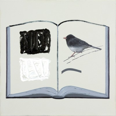 9. The book of Black and White